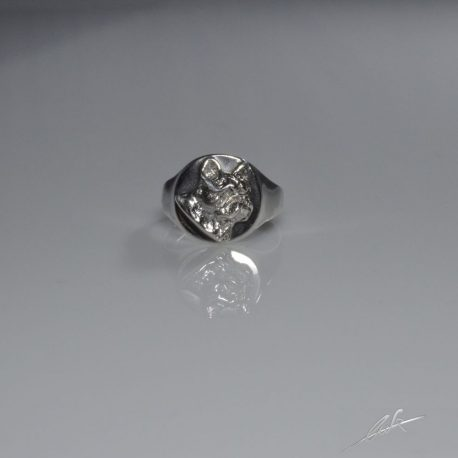 anello_chevalier_558eee722be29