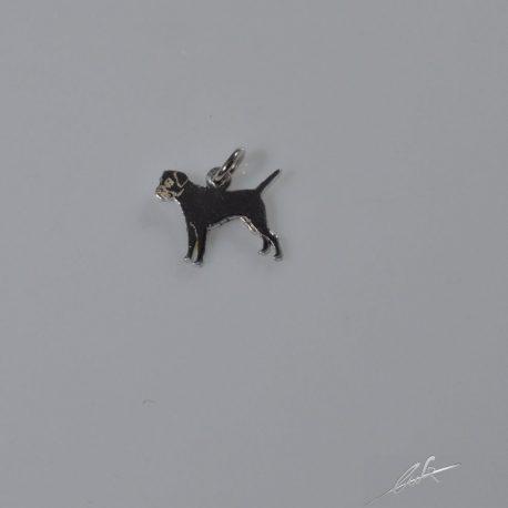 ch border terrier