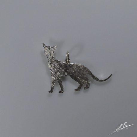 cio gatto orientale satinato