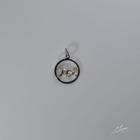 cio terranova 3d nel cerchio piccolo