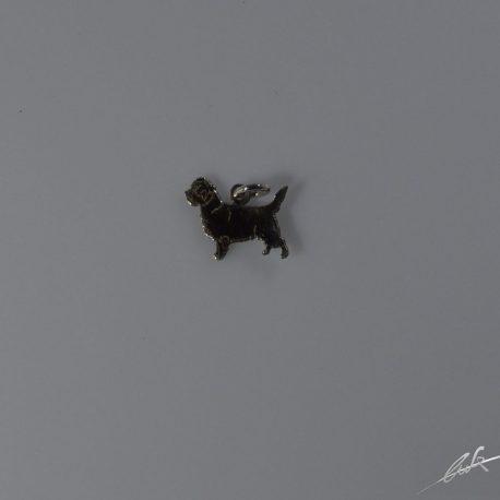 ch cairn terrier