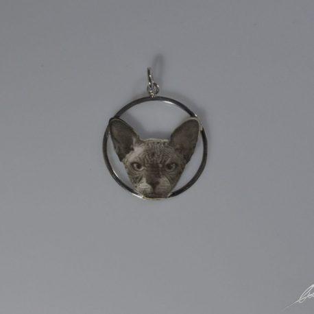 cio nel cerchio sfinx testa fotoincisione