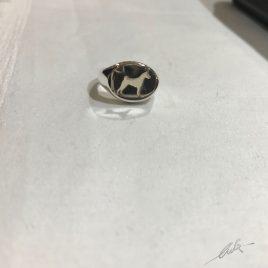 Nuovo anello chevalier Basenji